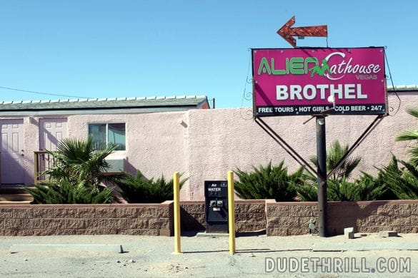 Burdel Alien Cathouse