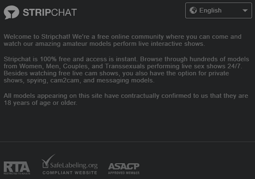 stripchat security
