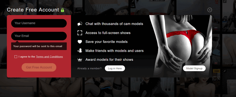 stripchat login page
