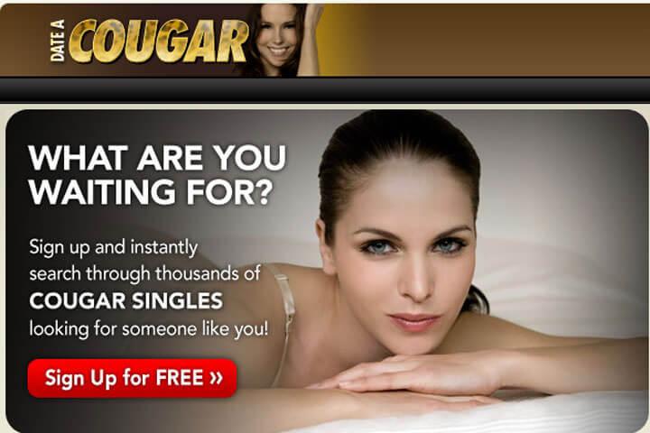 date-a-cougar
