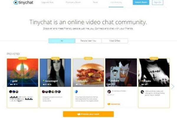 TinyChat video